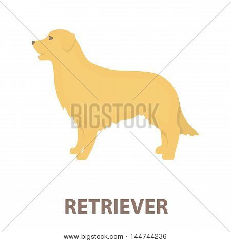 Retriever vector illustration icon in cartoon design
