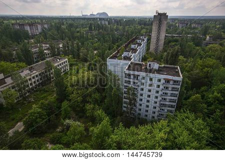 Nature Wins The Ghost Town Of Pripyat Near The Chernobyl Nuclear Power Plant