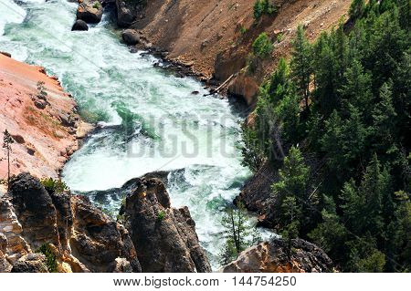 Yellowstone River rapids snake along with roiling and boiling white water. Canyon walls rise steeply on each side.