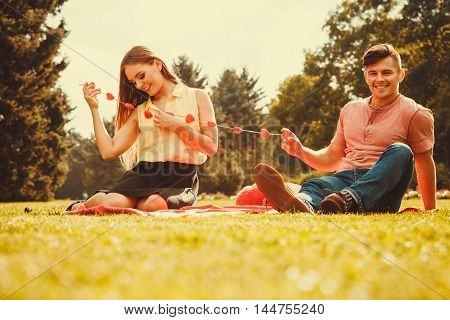 Love romance dating relationship leisure concept. Romantic couple spending time together. Girl and boy on picnic in park.