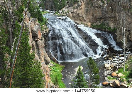 Beautiful Gibbon River tumbles over Gibbon Falls in Yellowstone National Park. Rocky gorge frames falls.