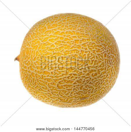 Ripe whole melon on a white background