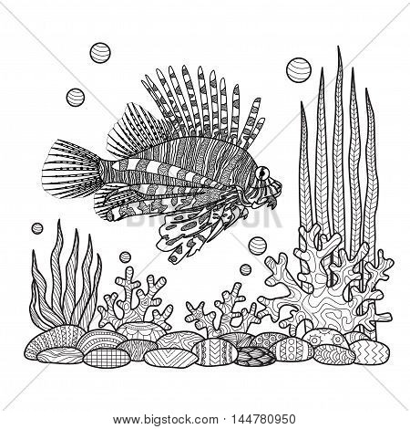 Unique zen doodles design of zebrafish swimming around sea corals,stones and seaweeds for T-Shirt design,tattoo, design element and adult coloring book pages - Stock vector