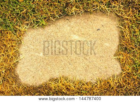 Green grass on a background Cement apply design and background.