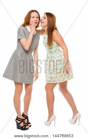 Girl Whispering A Secret To Her Friend On The White Background Isolated