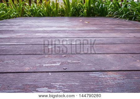 Old grunge wood with green leaves
