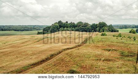 The Narrow Path Through A Wheat Field