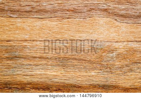 closeup of old wood for texture or background
