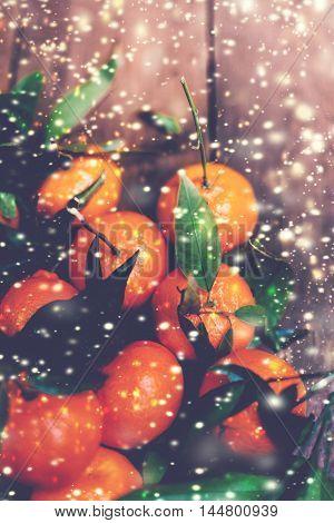 Christmas Mandarins Tangerines Close up macro fresh