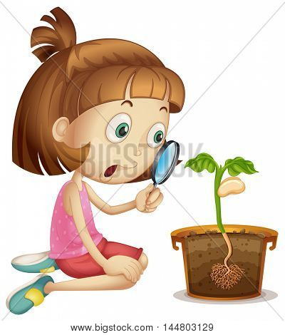 Girl observing plant growing in pot illustration