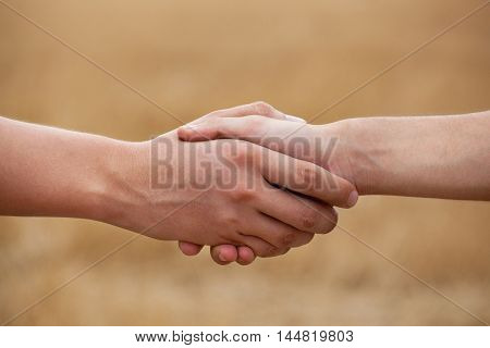 Two men farmers shake his hand against the background of the field.