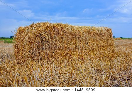 Sheaf of hay a rectangular shape is the slant a wheat field.