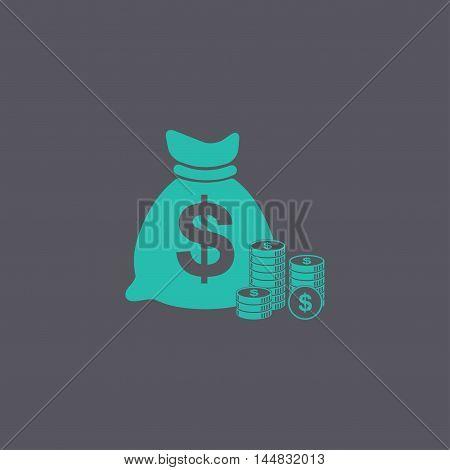 Money Icon. Flat Design Style.