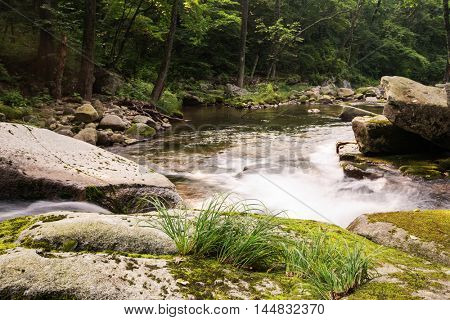 Fast flowing mountain river in a wild area