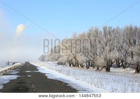 Road Along The River Winter
