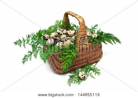 quail eggs in a wicker basket on a white background close-up. horizontal photo.