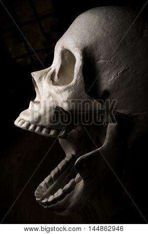 Terrifying screaming halloween skull for October holiday background