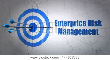 Success finance concept: arrows hitting the center of target, Blue Enterprice Risk Management on wall background, 3D rendering