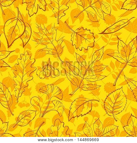 Seamless Background, Autumn Tree Leaves Contours and Silhouettes Oak, Iberian Oak, Raspberry, Willow, Liquidambar, Hawthorn, Aspen, Ginkgo Biloba, Elm Karagach, Birch, Ash, Chestnut, Sambucus. Vector