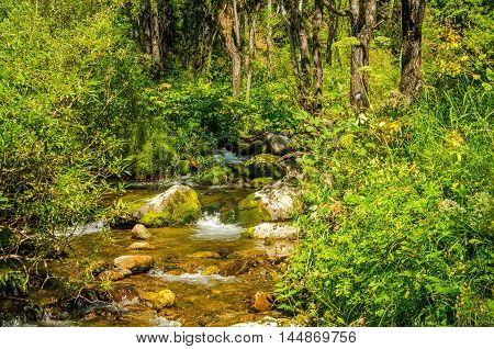 in summer rocky mountain river water silk.  mountain river