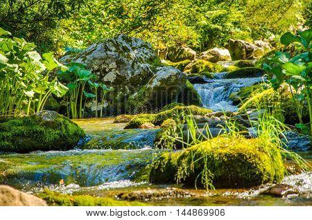 in summer rocky mountain river water silk.  mountain river