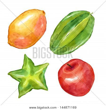 Watercolor fruits lemon carambola apple. Big collection of hand drawn illustrations. Good for book illustration, magazine or journal article.