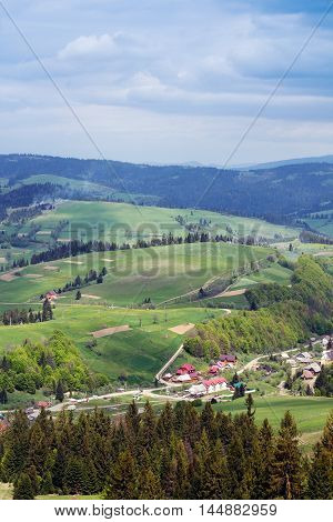 landscape consisting of a fir-trees on the foreground and Carpathians mountains with green grassy valley fir-trees and houses on the middle and cloudy skies on the background
