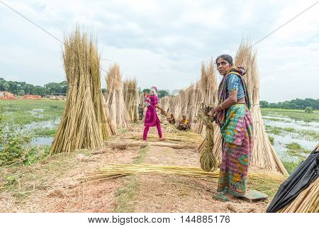 People Are Processing Jute
