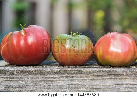 Three large heirloom tomatoes in a row on wood railing fence