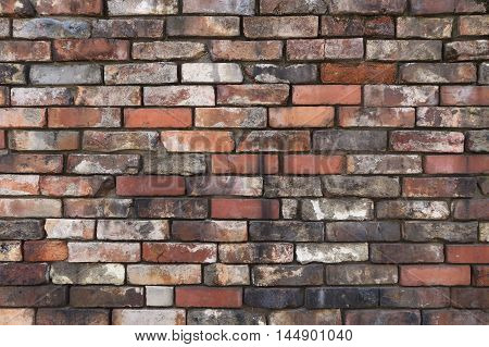 background of grey seemless  brick wall texture