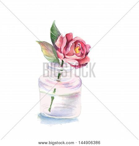 Flower in a glass vase. Watercolor illustration. Isolated on white background