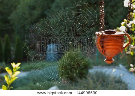 Cobweb in the garden in the sunset.