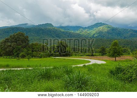 Curved road leading to big trees and distant mountains dark cloudy sky at Huay Tung Tao Chiang Mai Thailand