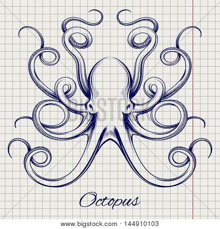 Hand drawn octopus vector. Ball pen imitation sketch