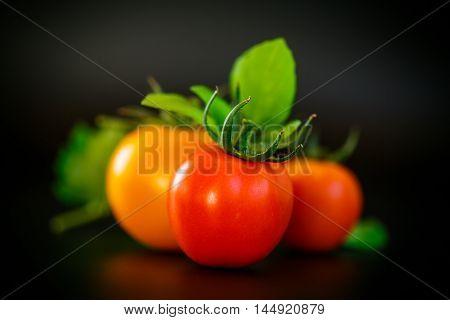 Fresh ripe tomatoes on a black background