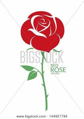 Rose. Red flower on white background. (EPS)