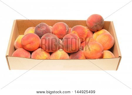 Freshly picked summer  Peaches from Green Bluff area near Spokane in Washington State