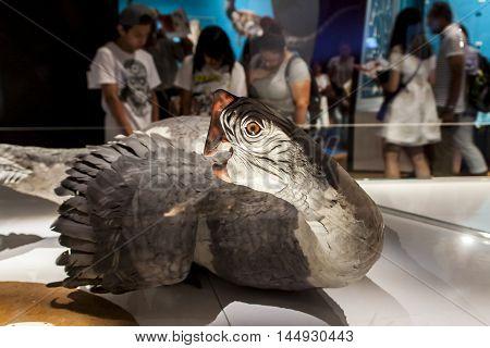 Citipati Osmolskae At American Museum Of Natural History In New York