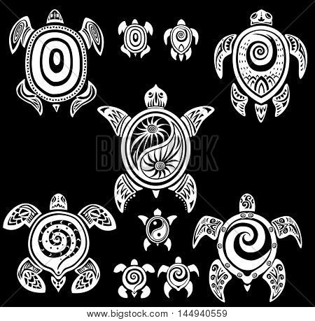 Decorative turtle on black