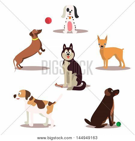 Happy dog vector characters on white background. Dogs standing and sitting holding newspaper.