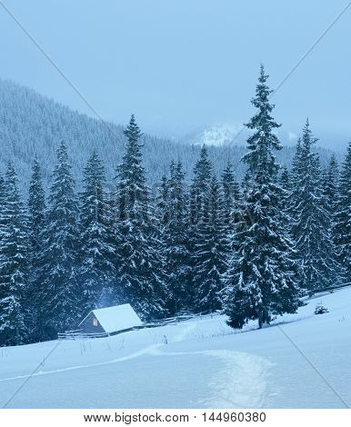 Christmas landscape with footpath in the snow. Wooden house on a mountain meadow near the forest. Fresh snow on the trees and hills. Cloudy weather in the evening. Carpathians, Ukraine, Europe