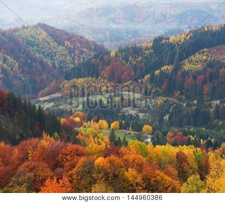 Autumn landscape with a beautiful forest in the mountains. Colorful trees on the slopes. View of the village in the valley. Carpathians, Ukraine, Europe