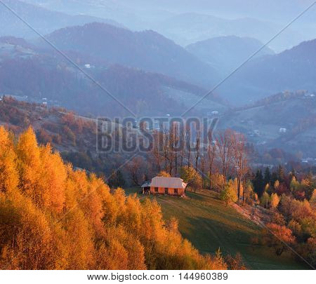 Autumn Landscape with birch forest. Wooden house in the mountain village. Beauty in nature. Carpathians, Ukraine, Europe