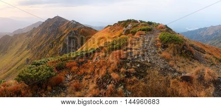 Hiking trail in the mountains. Autumn landscape cloudy morning. Carpathians, Ukraine, Europe