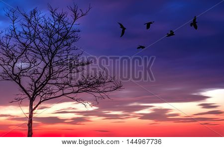 Black crows and tree on purple spooky background