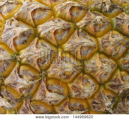 Yellow pineapple fruit skin surface texture background