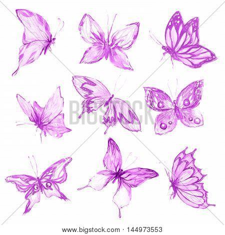 Watercolor butterflies set. Purple butterflies on white background. Beautiful fragile creatures for decoration.