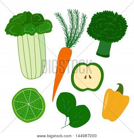 Vector stylized set of most popular organic products which are used for detox. Food and healthy lifestyle themes detox sources illustration kitchen and catering design.