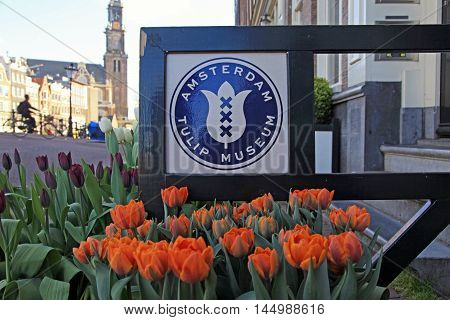 AMSTERDAM, NETHERLANDS - MAY 3, 2016: Flowers in front of entrance to Amsterdam Tulip museum, Amsterdam, Netherlands.