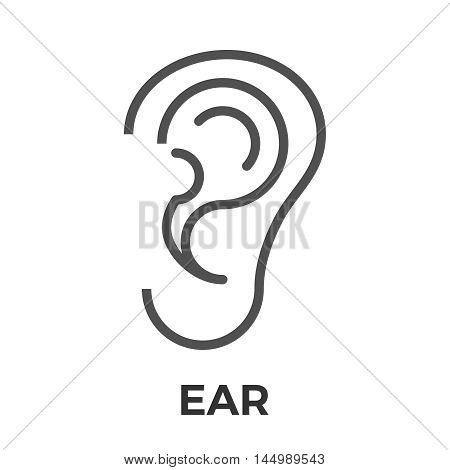 Ear thin line vector icon isolated on the white background.